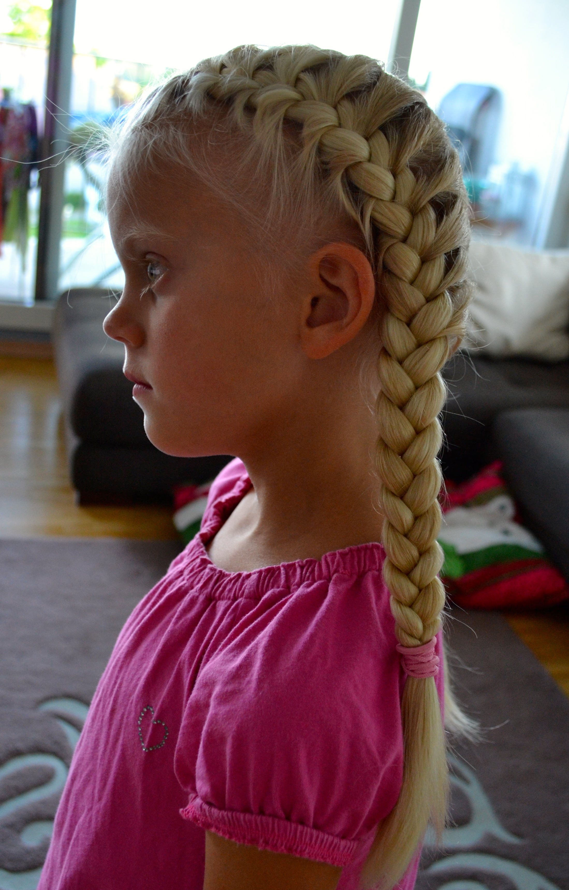 2 strand twist hairstyles : So, if you just learn to do the simple french braid , you already have ...